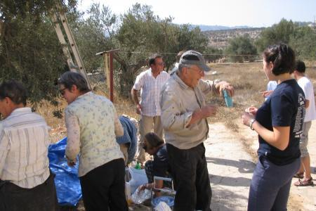 La crèche de Bethléem - La cueillette des olives - 2007